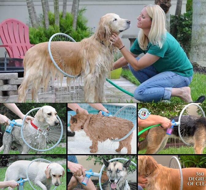 آرایشگاه حیوانات خانگی  مركز شستشوي سگ