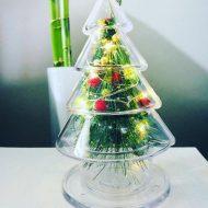 خرید درخت کریسمس شیک و مقرون به صرفه
