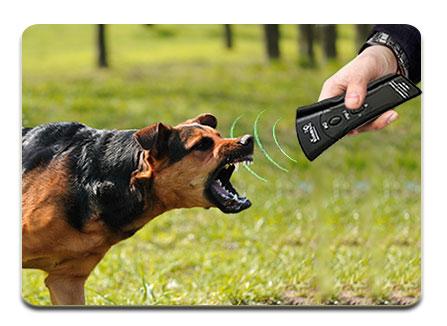دستگاه دفع کننده حیوانات دازر